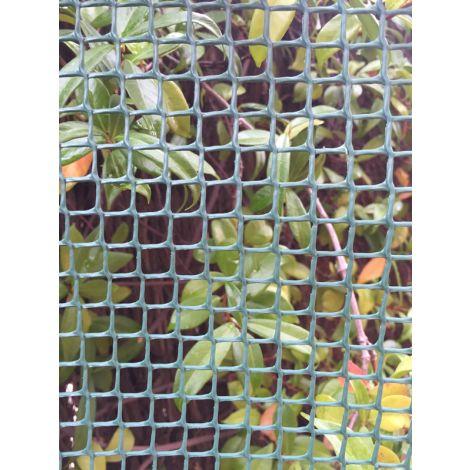 MALLA CUADRADA VERDE ROLLO PROFER GREEN 1X25 M