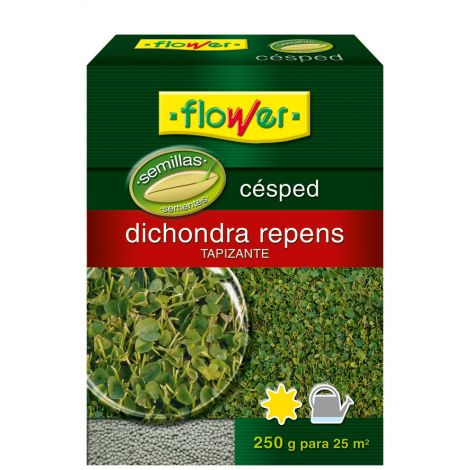 SEMILLA CESPED DIHONDRA REPENS FLOWER 250 G