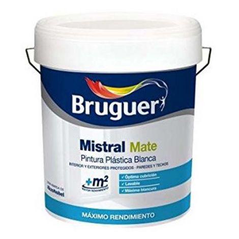 PINTURA PLASTICA INTERI/EXTERI MISTRAL 10 L